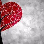 Perché soffriamo per amore e come non soffrire: Metodo