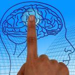 Programmazione Neurolinguistica: Cos'è e come utilizzarla per comunicare